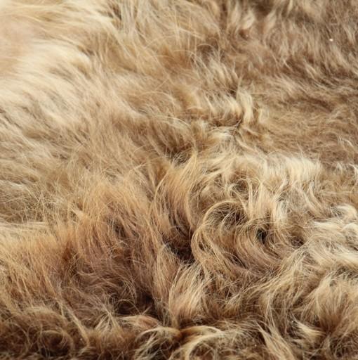 Scottish Highland Cowhide Rug 537 Het Millushandelshuis
