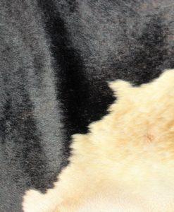 koeienhuid-friesland-zwart-wit-holstein