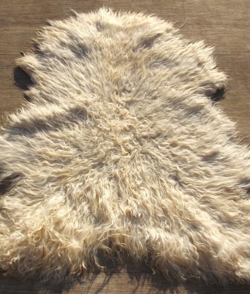 Angora geiten vacht 096