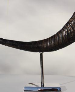 waterbuffel -hoorn-op- standaard