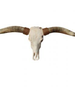 longhorn-koeienschedel-texas-runderschedel-gewei-hoorns-1210