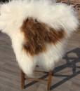 schapenvacht-langhaar-ijsland-wit-bruinnr 1017 (2)