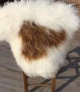 schapenvacht-langhaar-ijsland-wit-bruinnr 1017 (3)