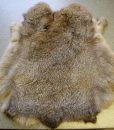 konijnenvachtje-konijnenvel,velletje,decoratie-70
