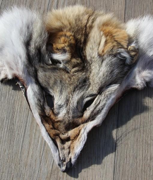 masker-mask-face-coyote-reenactment-western
