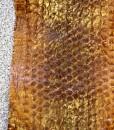 slangenhuid-legaal-bruin