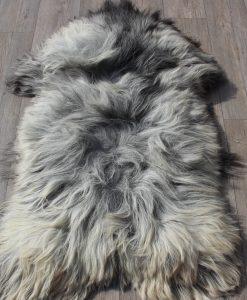 schapenvacht-1625-grijs-langharig-heide-schaap-