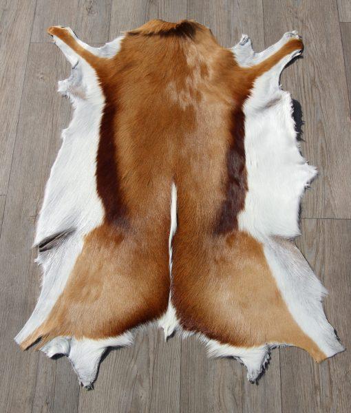 springbok-huid-vel-vacht-8
