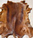 springbokhuid-vel-vacht-roest-bruin