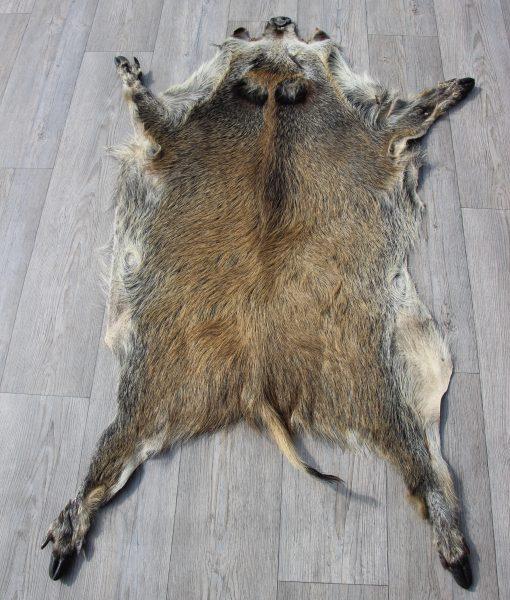 wildzwijnen-wildzwijn -vel-vacht-grijs-bruin-het-millus-handelshuis-