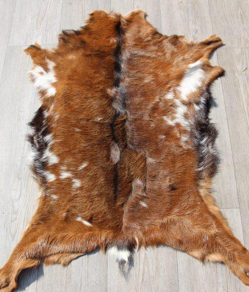 geitenvel-geitenhuid-geitenvacht-decoratie (11)