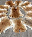 konijnenvacht-hazelnoot-konijnenvel-xxl