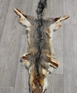 vossenvel-vossenhuid-greyfox-reenactment