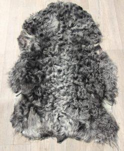gotlandse-schapenvacht-grijze-wol-