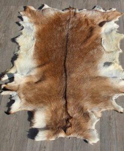 geitenhuid-groot-bruin-wit
