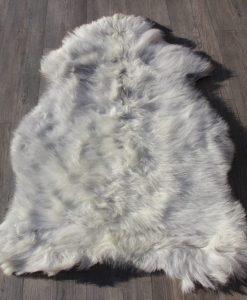 schapenvacht-heideschaap-grijs-26