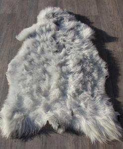 schapenvacht-heideschaap-grijs-27