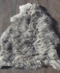 schapenvacht-heideschaap-grijs-28