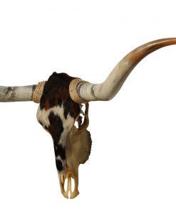 longhorn-koeienhuid-texas