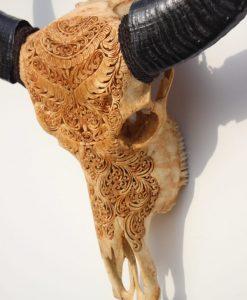 waterbuffel-waterbuffalo-handgegraveerd-handcarved-
