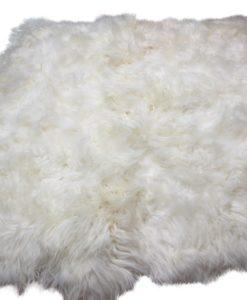 schapenvacht-vloerkleed-6-vachten