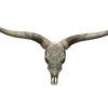 longhorn-koeienschedel-hoorns-gewei-wanddecoratie