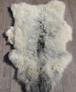 schapenvacht-gotlands-grijs-nr-p6