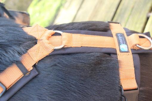 anny-x-hondentuig-kaneel-zwart