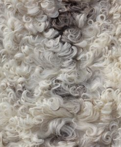 zachte lamsvacht-schapenvacht -met -offwhite-taupe-grijze- krulwol
