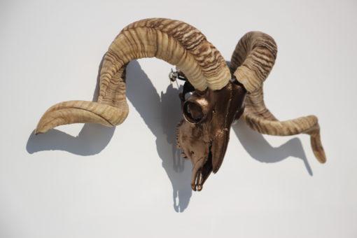 ram-bokkengewei-brons-tibet-hoogvlakte-