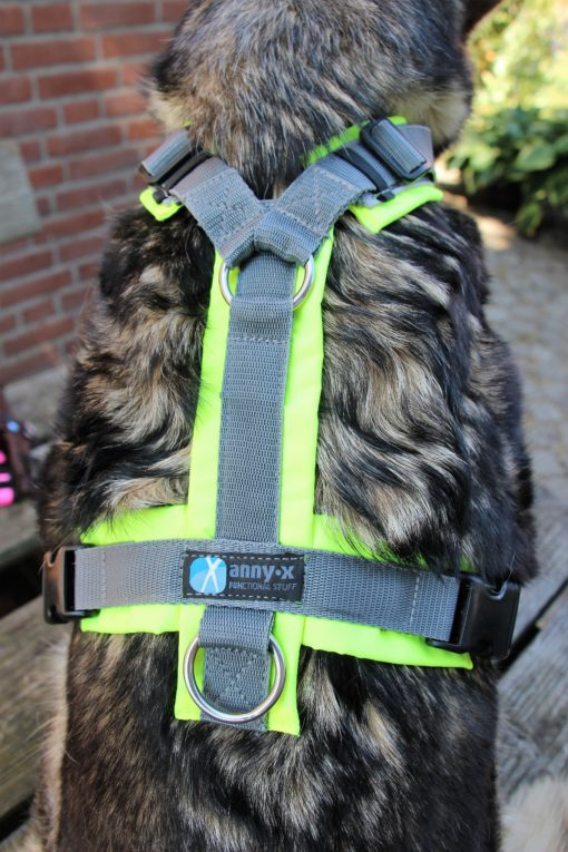 annyx protect hondentuig speurtuig geelgrijs maat m