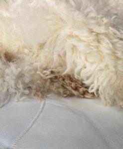 schapenvacht-kleed-tapijt-bruin-room-©-foto