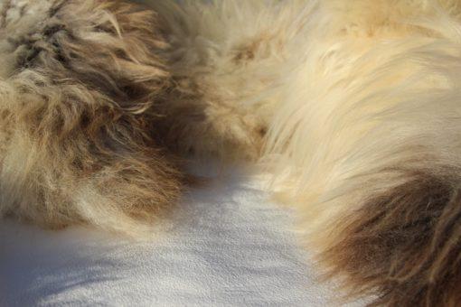 schapenvacht-taupe-roomkleur-wol-d63
