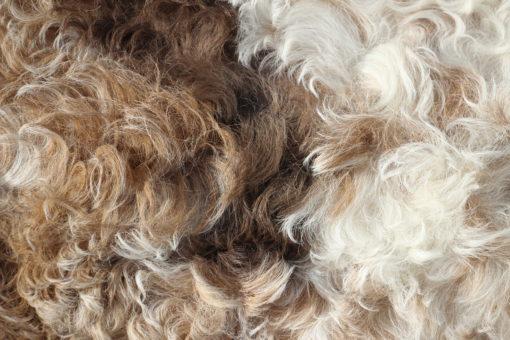 kussen-schapenvacht-nr2-detail-