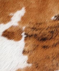 koeienhuid-bruin-wit-337