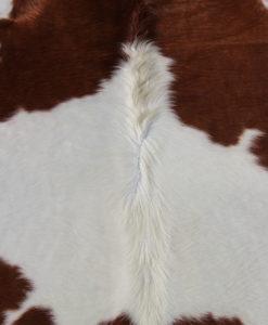 detail van -roodbonte koeienhuid
