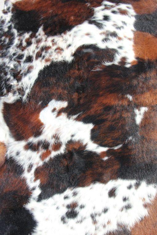 koeienhuid-driekleur-langhaar-14 (8)