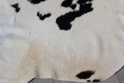 detail-foto-zwart-wit-koeienhuid
