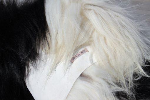 schapenvacht-vloerkleed-tapijt-zwart-wit- ijslands-lamsvacht.