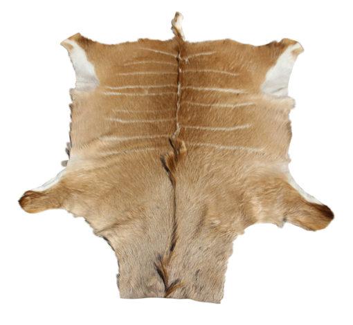 kudu vel kudu huid bruin gestreept
