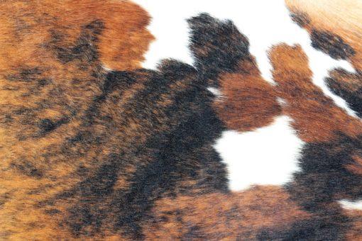 koeienhuid detail foto