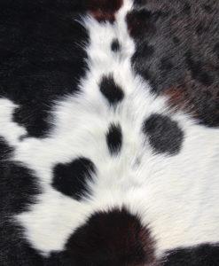 detail-foto-koeienhuid-328-6