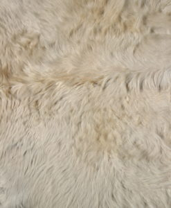 koeienhuid-stierenhuid-blond-frankrijk