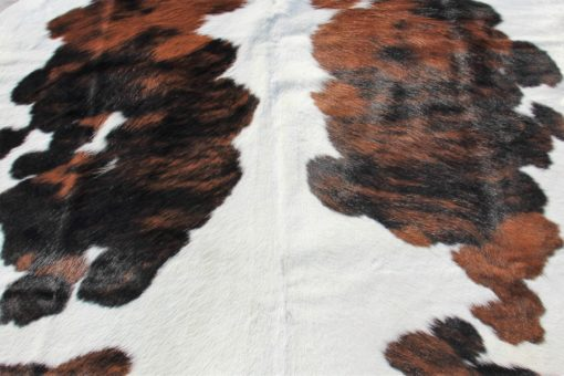 detail foto driekleur koeienhuid