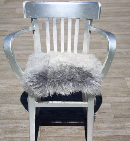 kussen-ijslands-grijs-brisa-kortharig