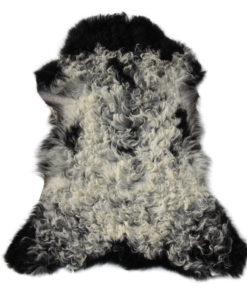 lamsvacht-schapenvachtVS2