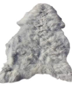 schapenvacht-heideschaap-grijs-29