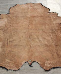 schotse-galloway-belted-detail-foto-lederzijde