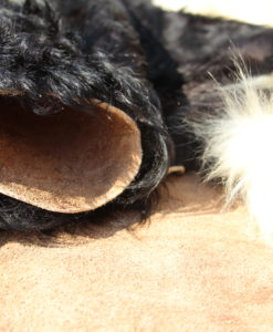 schotse-galloway-belted-detail-foto-