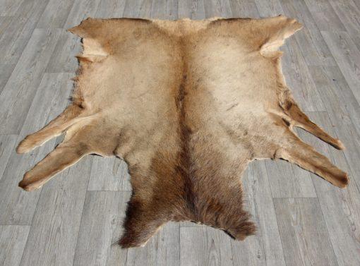 wapiti-elk-hertenhuid